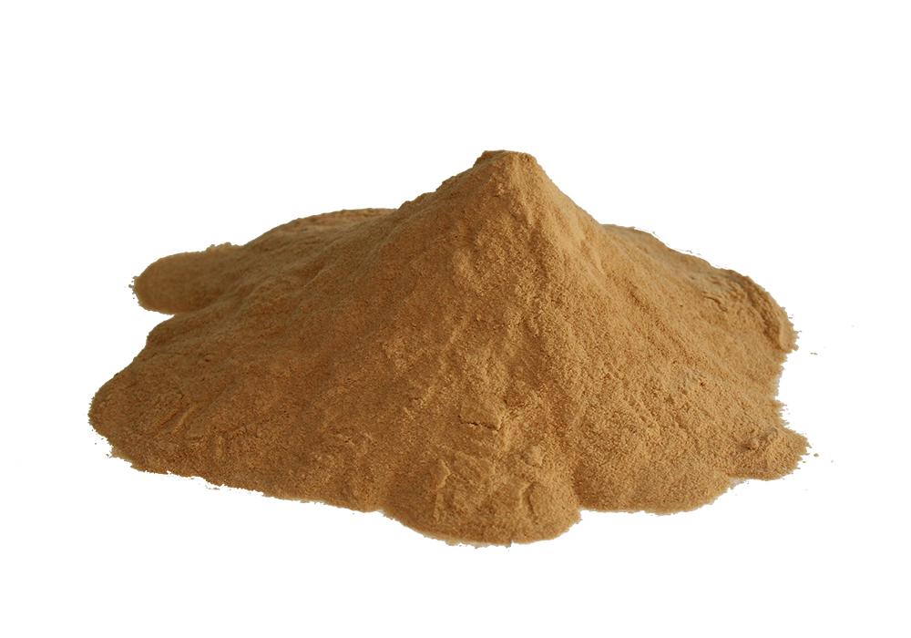 酱油粉 Soy Sauce Powder